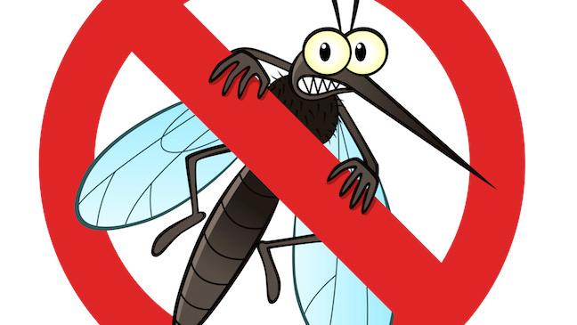 komarci-komarac-suzbijanje-komaraca