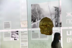 lobanja-narodni-muzej