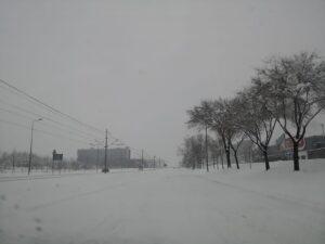 bulevar-milutina-milankovića-sneg