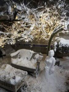 sneško-zvezdara-mali-mokri-lug