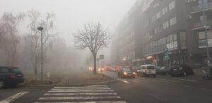magla-zdravka-čelara